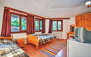 Стая в Калина